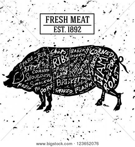 Butchery concept isolated on white and noise. Meat cut symbol, beef, pork, hand-drawing silhouettes. Vector illustration
