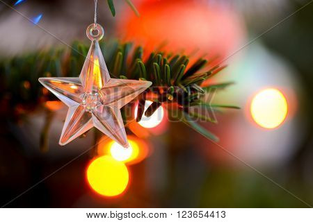 Starlet Christmas decorations hanging in tree in natural light
