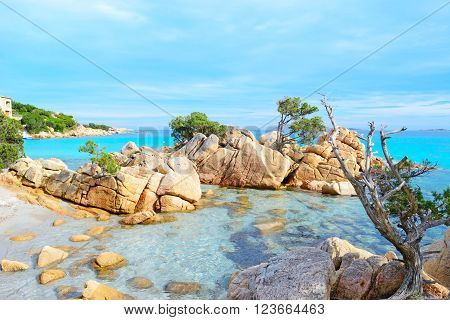 famous Capriccioli beach in Costa Smeralda, Sardinia