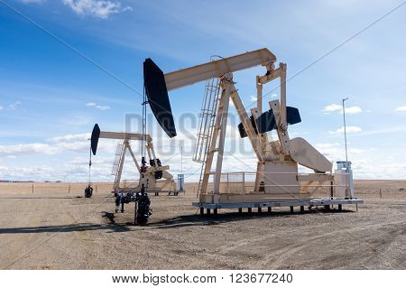 Pumpjacks In Rural Alberta, Canada