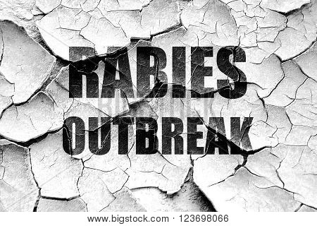 Grunge cracked Rabies virus concept background with some soft smooth lines