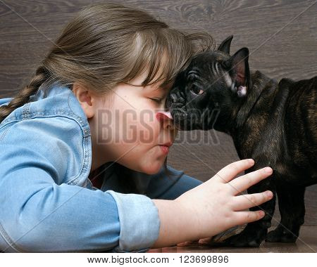 Girl and dog. The girl's face and a large muzzle puppy. Dog black French Bulldog. The relationship of the child and the dog. Concept - trust, love, the contents of the house dogs