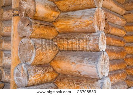 Detail of log cabin wooden house texture