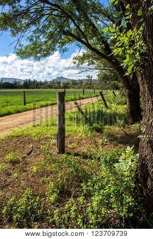 Shot of lonely farm road entrance in dappled sun in Eastern Cape South Africa