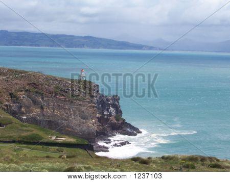Otago Peninsula In New Zealand
