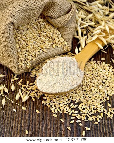 Flour oat in a wooden spoon, a bag of oat stalks of oats on the background of wooden boards