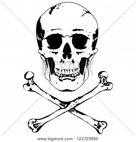 Skull and crossbones. Illustration on white background