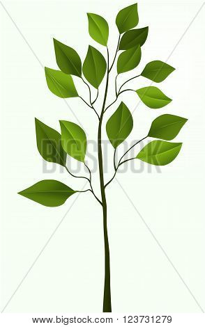 Vector illustration of simple vector tree design