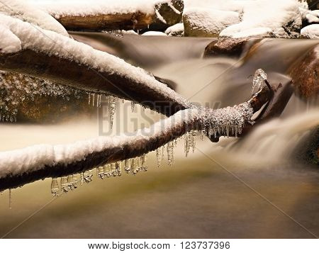 Icicles hang on twigs and icy bark above rapid stream. Reflections of head lamp in icicles.