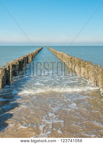 Seascape image with a weathered breakwater of wooden posts overgrown with algae and shellfish and an azure Dutch North Sea on a sunny day in the winter season.