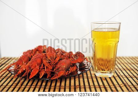 cooked Crayfish on a white background. Crayfish isolated on white. With glass of beer