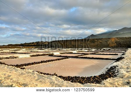 Picture Photo of Salt Flats in the Canry islands ** Note: Soft Focus at 100%, best at smaller sizes