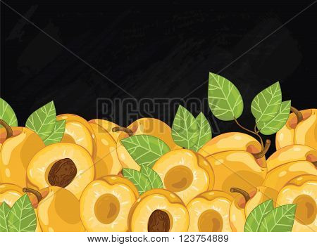 Apricot on chalkboard background. Apricot composition, plants and leaves. Organic food. Summer fruit. Fruit background for packaging design.