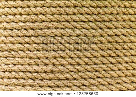 Perfect yellow rough rope texture. Close-up. The texture of the rope with copy space.