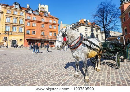 WARSAW POLAND 13 march 2016: Horse carriage at main square in Warsaw in a sunny day. Warsaw is the capital and the largest city of Poland