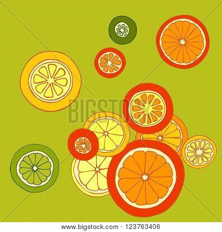 Collection of citrus slices - orange, lemon, lime and grapefruit, citrus card, vector illustration