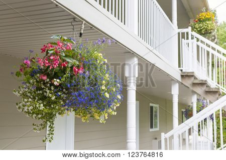 Colorful hanging flower basket decorating house exterior with copy space