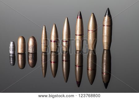 bullets of various calibers with reflection on a gray background