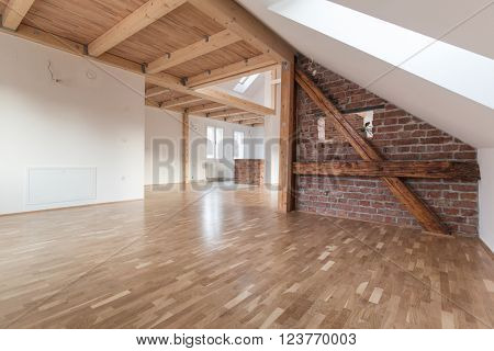 Interior of modern house with empty space