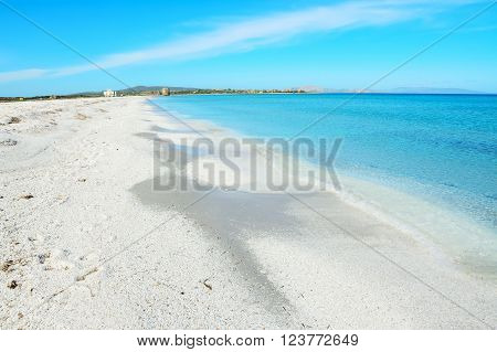 white sand in Stintino shoreline in Sardinia