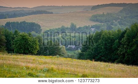 landscape in the hills and deciduous forest summer season ** Note: Visible grain at 100%, best at smaller sizes
