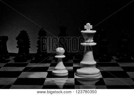 Chess. White King and Pawn on the board. Set of chess figures.