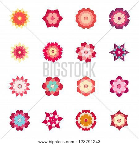 Set of colorful flowers on white background, vector illustration