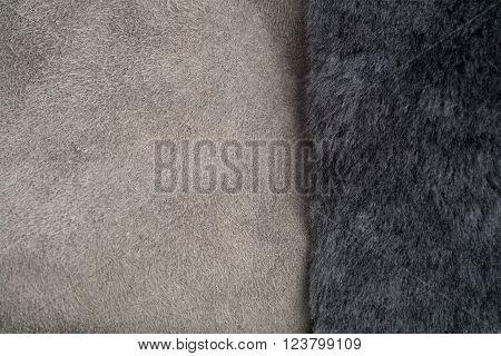 Grey Fur On Light Grey Shearling