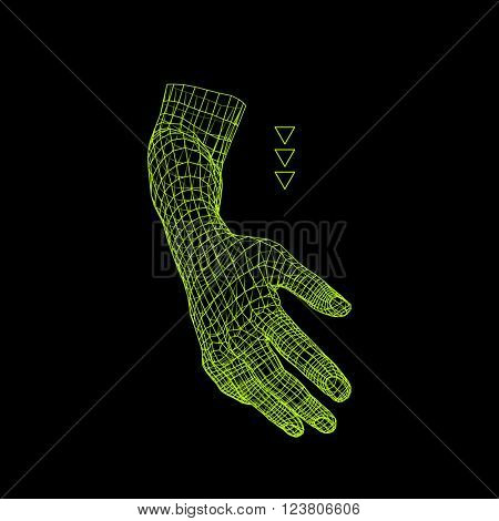 Human Arm. Human Hand Model. Hand Scanning. View of Human Hand. 3D Geometric Design. 3d Covering Skin. Polygonal Design. Can be used for science, technology, medicine, hi-tech, sci-fi.