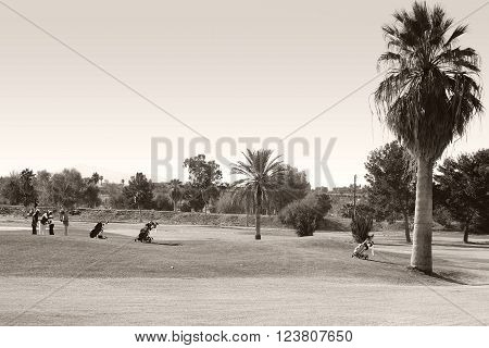 NEEDLES, UNITED STATES - DECEMBER 23: Retired pensioners playing golf on a golf course planted with palms in Mediterranean climates on December 23, 2015 in Needles.