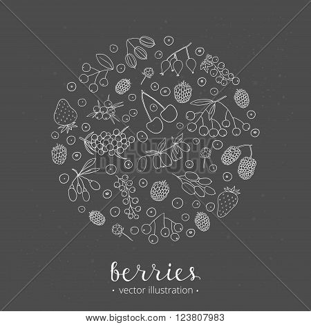 Hand drawn outline berries in circle shape. Strawberry, goji, sea buckthorn, cherry, raspberry, barberry, mulberry, gooseberry, juniper, aronia, rose hips, honeysuckle, cloudberry, maqui.