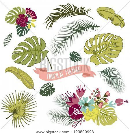 Set of trendy Tropical leaves, Vector illustration