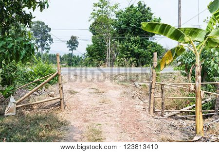 Small gravel road of the entrance to organic orchard in the countryside of Thailand.