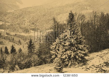old style photo of winter scene