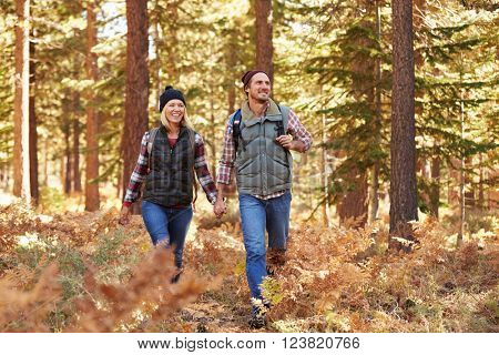 Couple enjoying hike in a forest, California, USA
