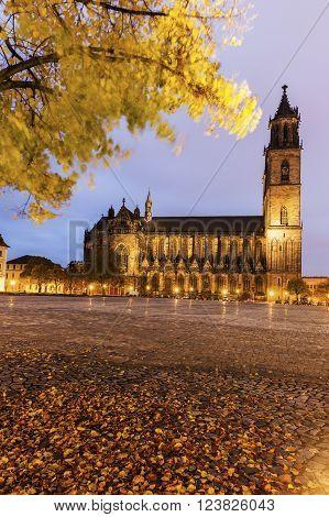 Magdeburg Cathedral at night. Magdeburg Lower Saxony Germany.