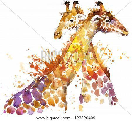 Giraffe. Giraffe Tee shirt graphics. Giraffe illustration with splash watercolor textured background. Giraffe watercolor  illustration for fashion print, poster, textiles, fashion design