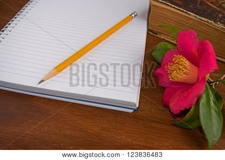 Notebooks and old book with romantic pink flowers camelia on wooden background ** Note: Soft Focus at 100%, best at smaller sizes