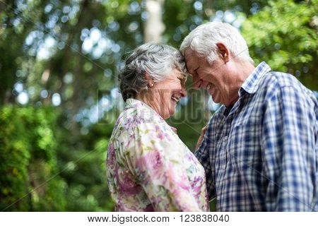 Romantic senior couple touching head against trees in back yard
