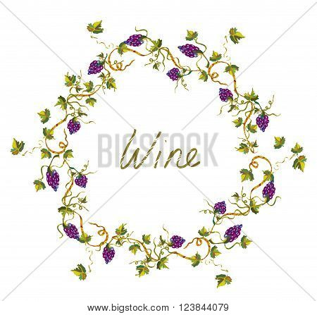 Wine label or background with vines and grape - vector illlustration