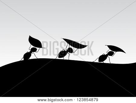 silhouette of ants. Three ants with leaves go on the mountain against the sky