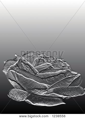 Stock Photo Of Silver Rose