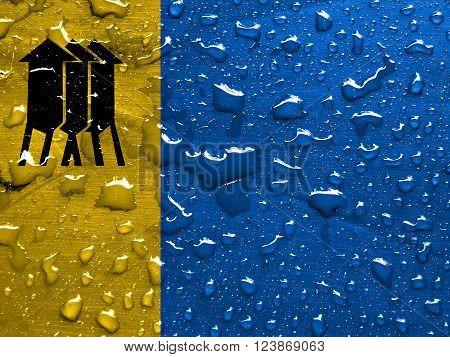 flag of Porto Velho with rain drops