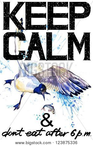Keep Calm. Keep Calm and do not eat after 6 p.m. Keep Calm Tee shirt design. Seagull watercolor illustration. Sea Gull. Handwritten text. Keep Calm Tee shirt print.