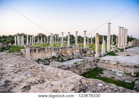 Ancient City Of Salamis Located In Cyprus.