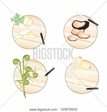 Vegetable, Illustration of Celery Root , Truffle Mushrooms, Fiddleheads Ferns and Water Lily Root on Wooden Cutting Boards.