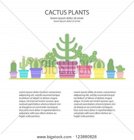 Design template with colorful cacti in a pot. Icon of cactus flower. Desert plant. Vector concept illustration of a colorful cactus.