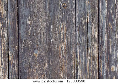Old Wood. Background, Wooden Brown Texture For Designer