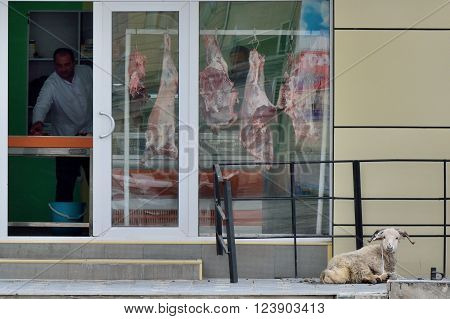 BAKU, AZERBAIJAN - MARCH 03 2014: A sheep tied up outside a butcher's shop awaiting slaughter, a familiar scene even in parts of the capital