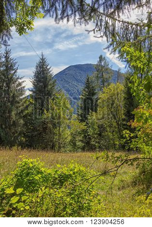 Spring Landscape In The Mountains With View To Wallberg Mountain